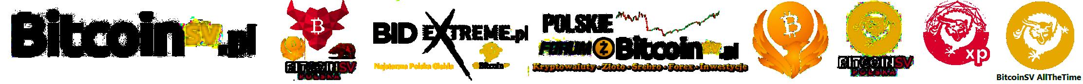 Bitcoin SV – Polska społeczność BSV
